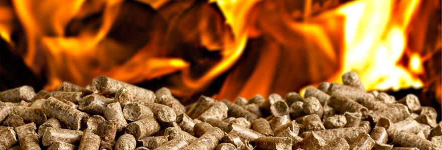 granulés combustible de chauffage